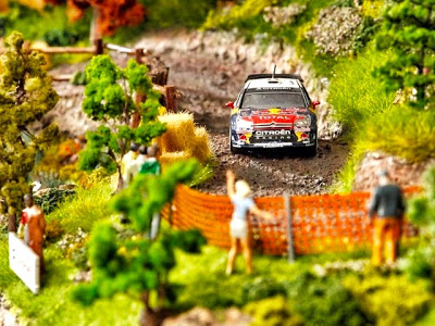 Citroen DS3 Rally Scale Model 1